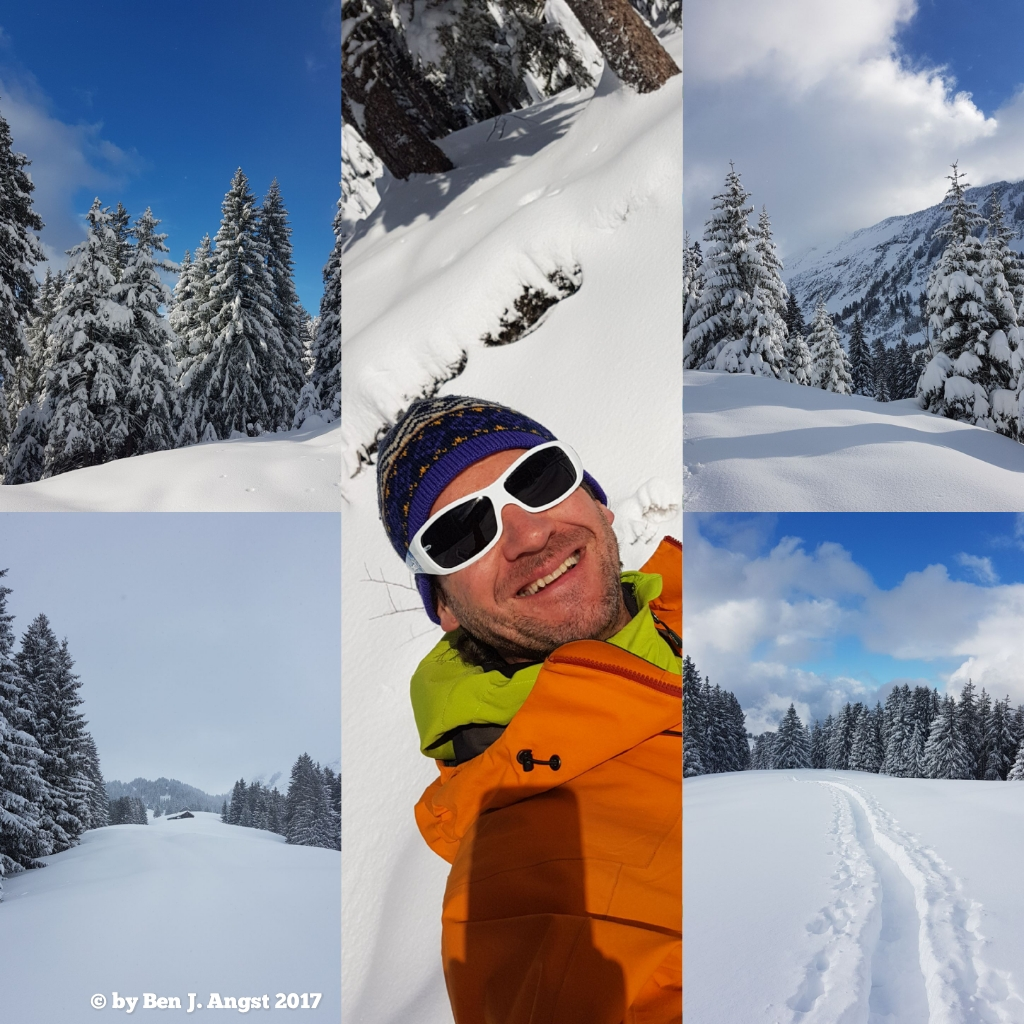 Auf der Alp Looch