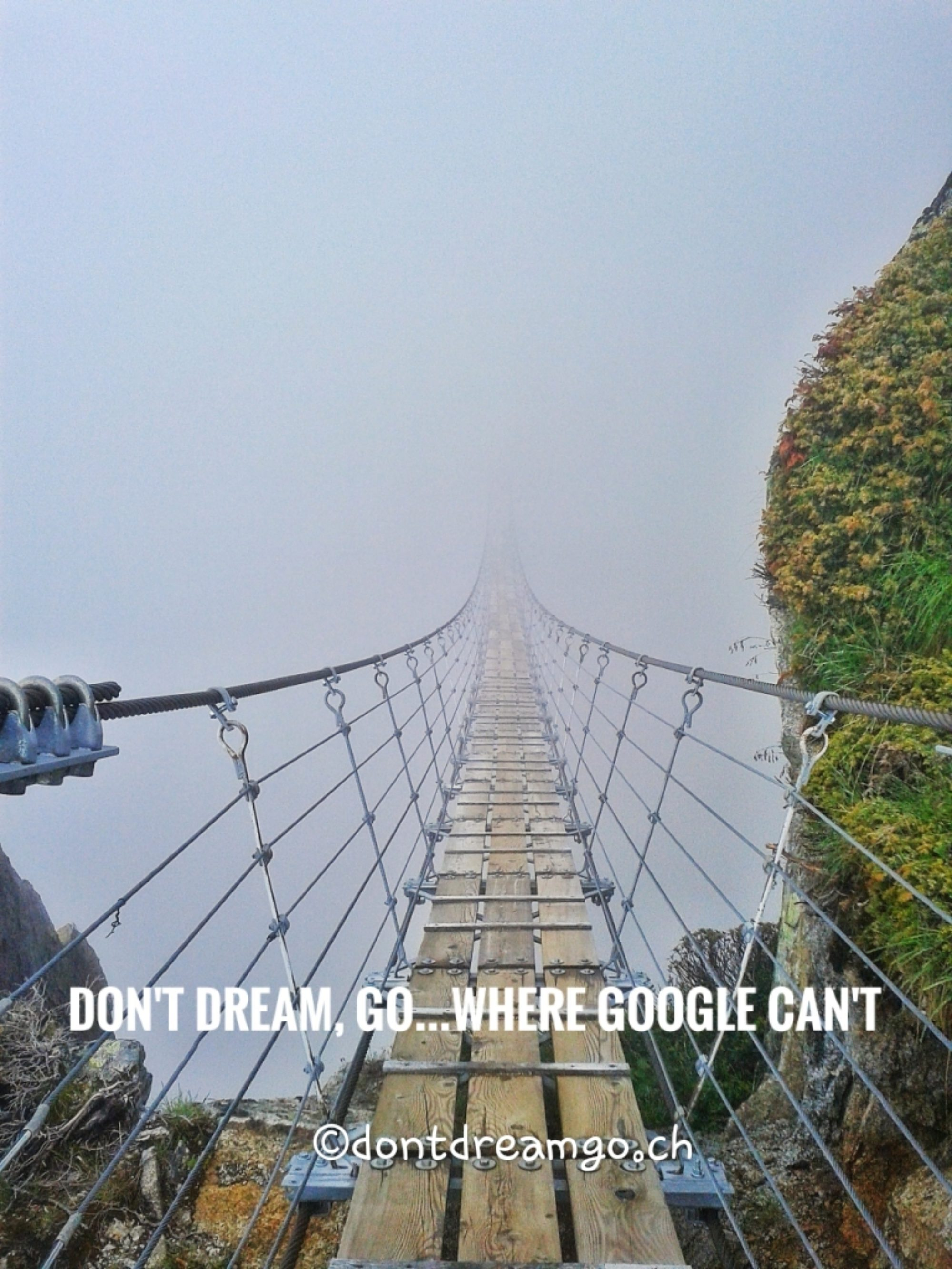 Don't dream - go